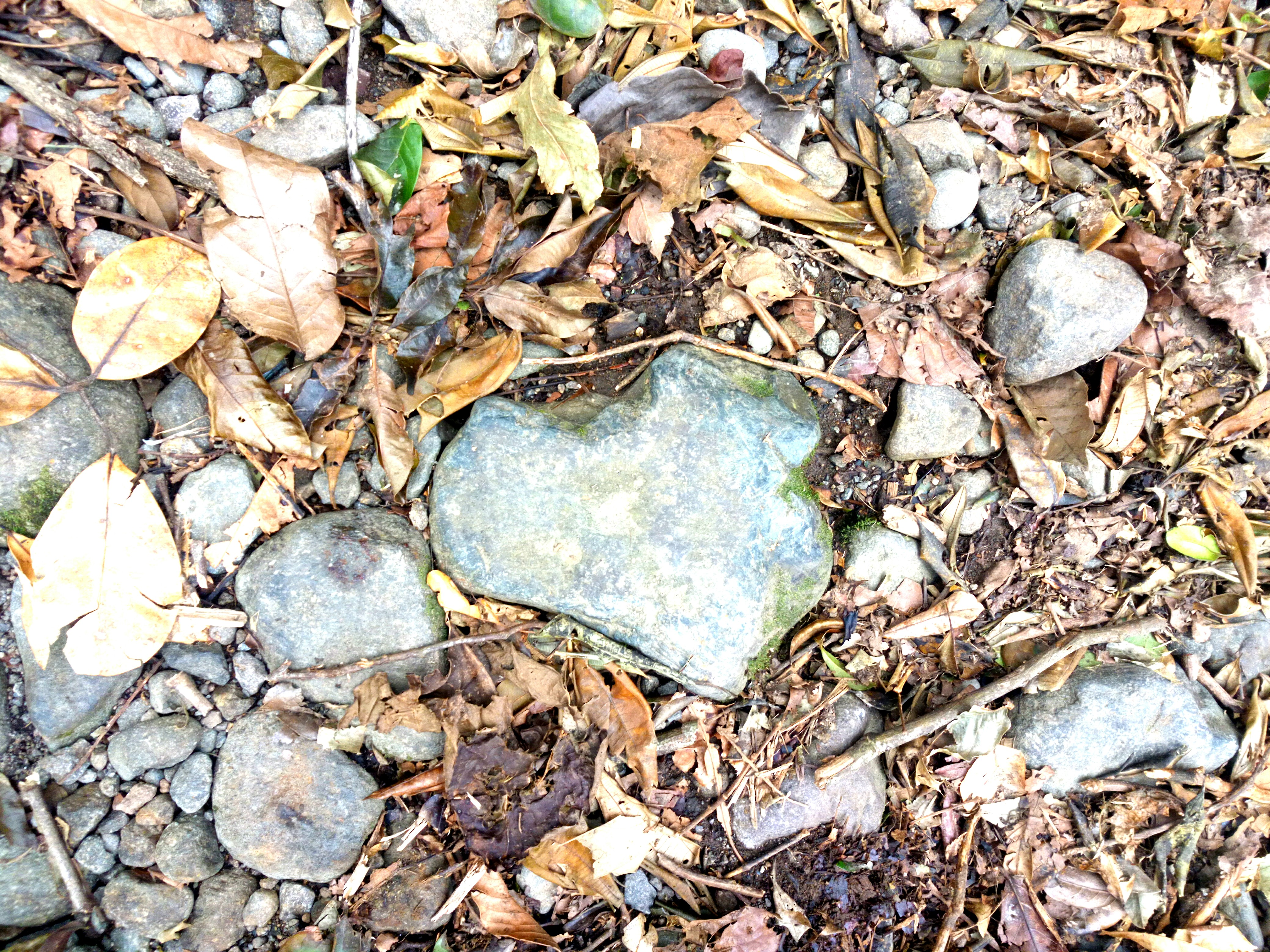 IMG_20170927_102826photo coeur de pierre