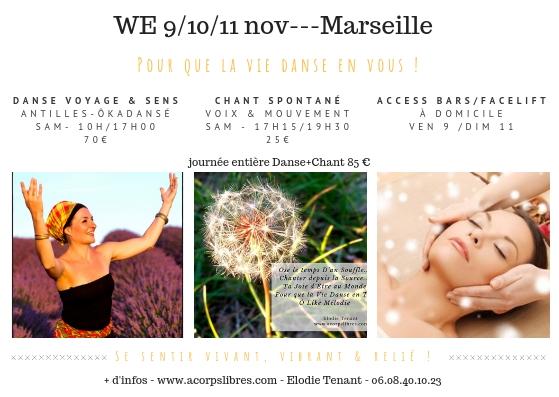 WE 10_11 nov---Marseille Pour que la vie danse en vous !