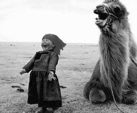 photo Mongolie enfant chameau
