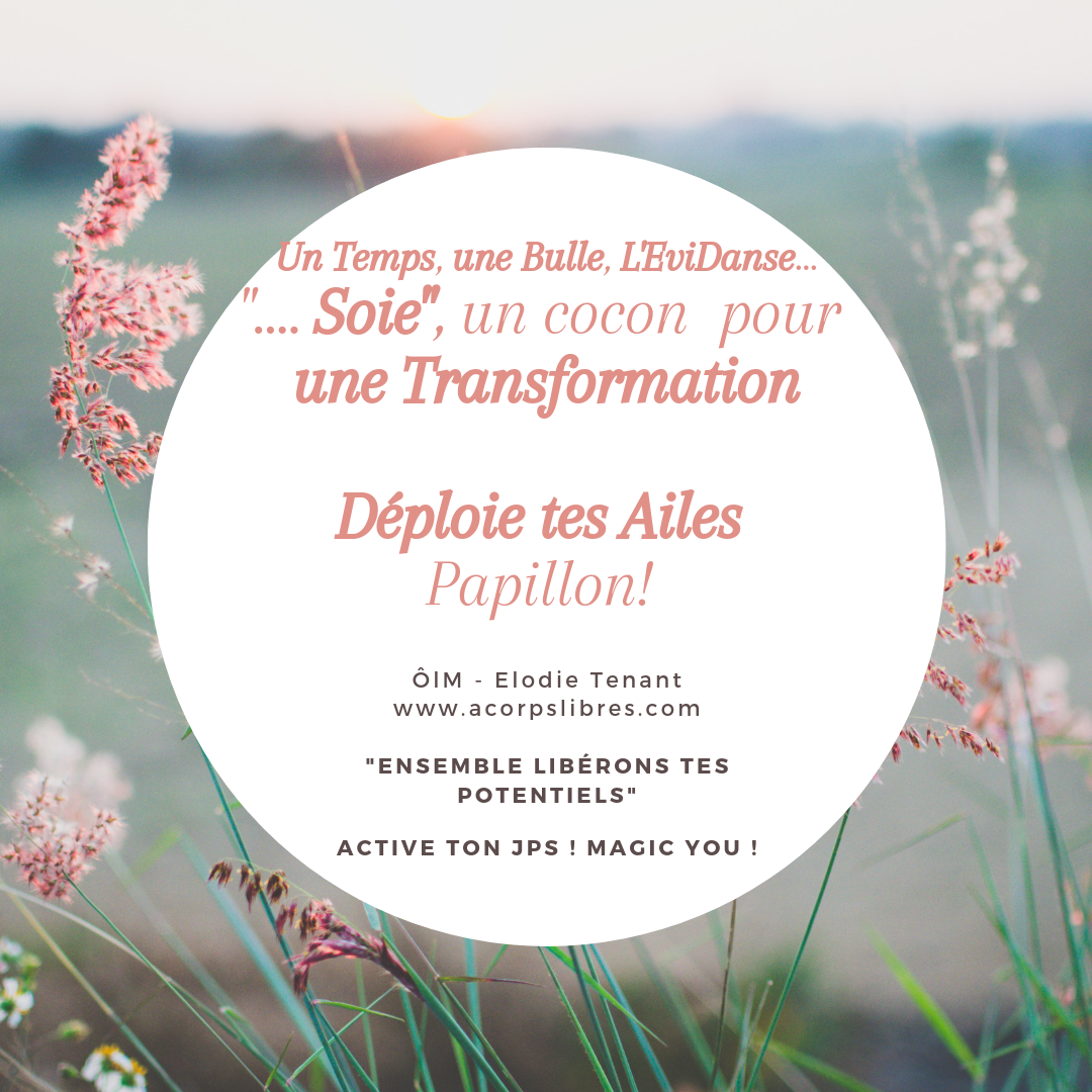 En Soie, transformation papillon