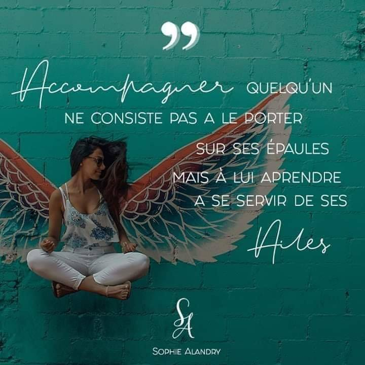 accompagner ailes
