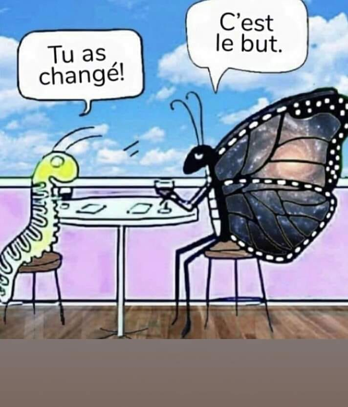 tu as changé c le but papillon