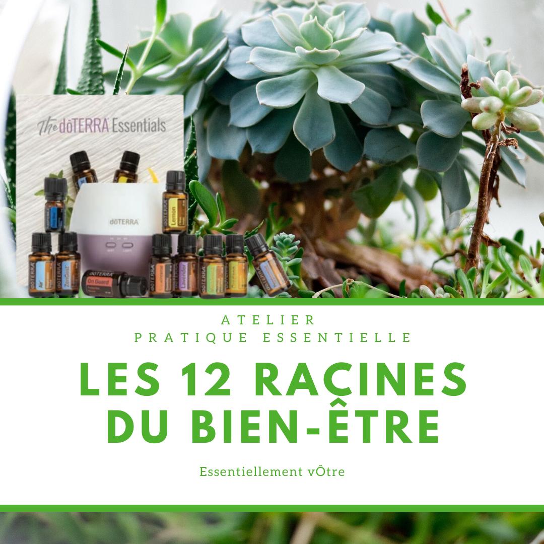 Les 12 racines du Bien-être instagram