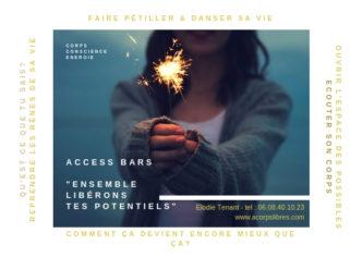 flyer Access consciousness